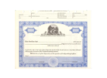 TBLNS - 8 1/2 X 11, Blue, Without Par Value, Ohio State Seal Stock Certificate