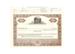 8 1/2 x 11, Brown, Without Par Value, Ohio State Seal Stock Certificate