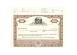 8 1/2 X 11, Brown, With Par Value, Ohio State Seal Stock Certificate