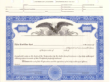 8 1/2 X 11, Blue, With Par Value, Eagle Vignette Stock Certificate