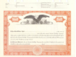 8 1/2 X 11, Orange, Limited Liability Certificate